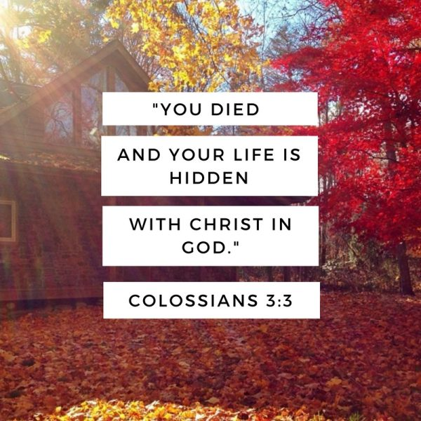 you-died-and-your-life-is-hidden-with-christ-in-god
